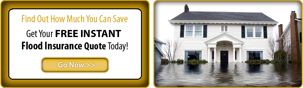 Gulf Coast Flood Insurance